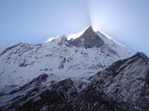 Sole al ghiacciaio di Fox Fotografie Stock