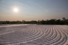 Sole al giacimento crudo della manioca in rurale della Tailandia Fotografie Stock Libere da Diritti