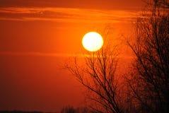 Sole arancio Immagini Stock Libere da Diritti