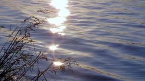 Sole caldo di alba di mattina sopra il fiume di sonno archivi video