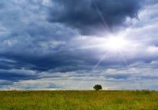 sole della pioggia Fotografie Stock Libere da Diritti