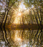 Sole di autunno nel lago fotografia stock libera da diritti