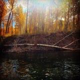 Sole di autunno sul fiume fotografie stock libere da diritti