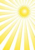 Sole di estate Fotografie Stock
