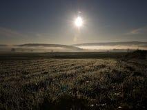 Sole di mattina Immagini Stock
