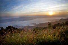Sole di mattina. Fotografia Stock Libera da Diritti