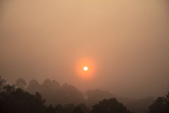 Sole di mattina Fotografia Stock Libera da Diritti