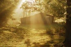 Sole di mattina attraverso la nebbia Fotografia Stock