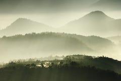 Sole di mattina con nebbia fotografia stock