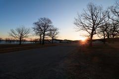 Sole di mattina di inverno Immagine Stock Libera da Diritti