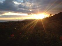 Sole di Montecito Immagini Stock
