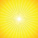 Sole di vettore su priorità bassa gialla Immagine Stock