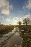 Sole dopo pioggia Fotografia Stock