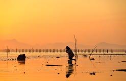 Sole e mare di mattina immagini stock libere da diritti