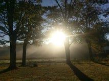 Sole e nebbia fotografie stock