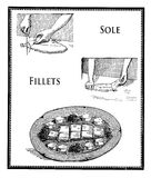 Sole fillets preparation, vintage engraving Stock Images