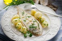 Sole fish with potatoes. Over dish Stock Photography