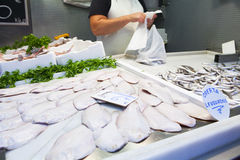 Sole fishes and anchovies exposed at fish market. Raw fish with fishmongers at background Stock Photo