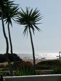 sole messo sulla spiaggia fotografia stock libera da diritti