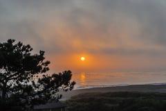 Sole rosso bruciante, nebbia densa, cielo dipinto, siluetta Immagine Stock Libera da Diritti