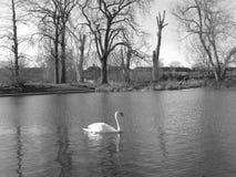soledad Imagen de archivo libre de regalías