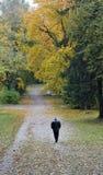 Soledad del otoño fotografía de archivo