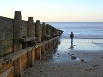 Soledad que mira fijamente hacia fuera al mar Imagen de archivo libre de regalías