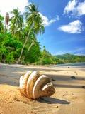 Soledad tropical imagen de archivo