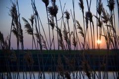 Soleil au-dessus de lac Images stock