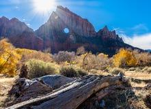Soleil au parc national Zion images libres de droits