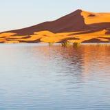 soleil dans le désert de jaune de lac du sable et de la dune du Maroc Images libres de droits