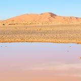 soleil dans le désert de jaune de lac du sable et de la dune du Maroc Photo libre de droits
