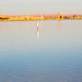 soleil dans le désert de jaune de lac du sable et de la dune du Maroc Photographie stock libre de droits
