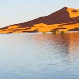 soleil dans le désert de jaune de lac du sable et de la dune du Maroc Photos stock