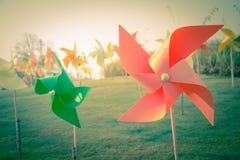 Soleil dans le jardin avec le rétro filtre Photo stock