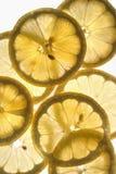 Soleil de citron Image libre de droits