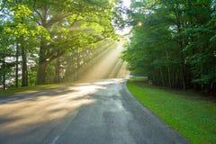 Soleil de matin Image stock