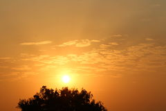 Soleil de matin image libre de droits