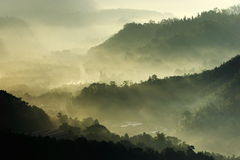 Soleil de matin avec le regain Photos libres de droits