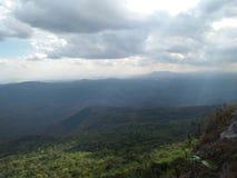 Soleil de montagnes de forêt de collines vertes Photos stock