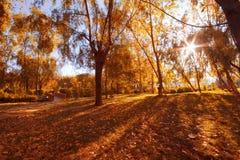 Soleil des montagnes Photo stock