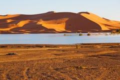soleil en jaune de dune du Maroc Image stock