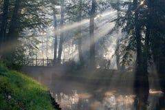 Soleil et brouillard photos stock