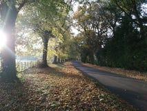 Soleil un jour d'automne Photos stock