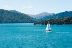 A solely sailing boat at the Marlboro sound, New Zealand Royalty Free Stock Images