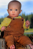 Solemn Baby on Stump Stock Photos