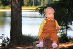 Solemn Baby on Stump. A cute solemn baby wearing overalls sitting on a stump in front of a lake in the forest.  Shallow depth of field Royalty Free Stock Photos