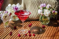 Free Solemn Rustic Still Life With Glass Of Red Drink With Autumn Berries And Ice Surrounded By White Flowers On Wooden Table In The Stock Images - 161436344