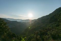 Solen är borttappad bland träden Arkivbilder