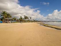 Solen över den tropiska stranden med kokosnöten gömma i handflatan på Porto de Galinhas, Brasilien Konturer av palmträd och att f arkivbild